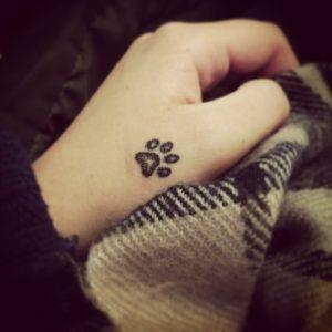 tattoo zampa tatuaggio zampa gatto